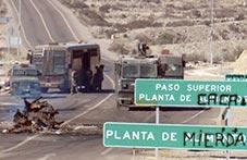 Chile: el ambiente, hijo abandonado por los gobiernos, ¡catástrofe en criadero de cerdos!