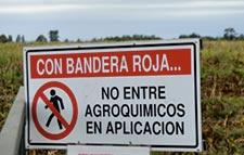 Cultivos transgénicos y plaguicidas: las regiones más contaminadas en Chile