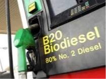 Unión Europea: biocombustibles y hambre /  Dos caras de la misma moneda