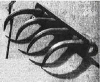 Cara y sello de una condena