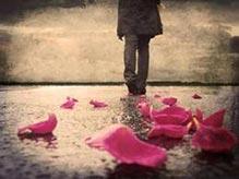 En nombre de la rosa
