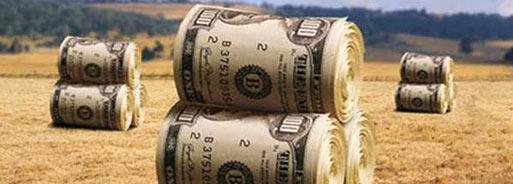 dolargen