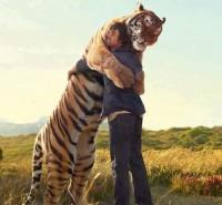 tigre y hombre