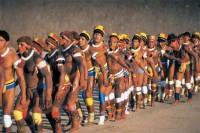 br diversidad etnica