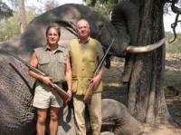 esp rey y elefante