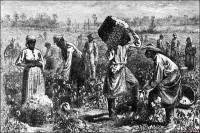 eeuu esclavos