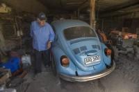 Leal a su viejo escarabajo