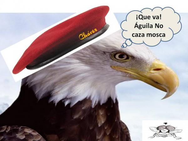 Aguila no caza mosca