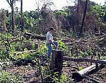 Paraguay.  –  RELIGIOSO DEPREDADOR