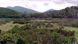 Tierra del Fuego: Los bosques a salvo. Por ahora